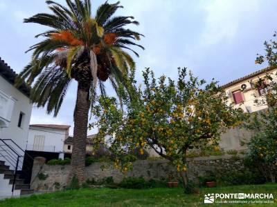 Sierra Gata - Senderismo Cáceres; selva irati monasterio de piedra zaragoza cerezo en flor taxus ba